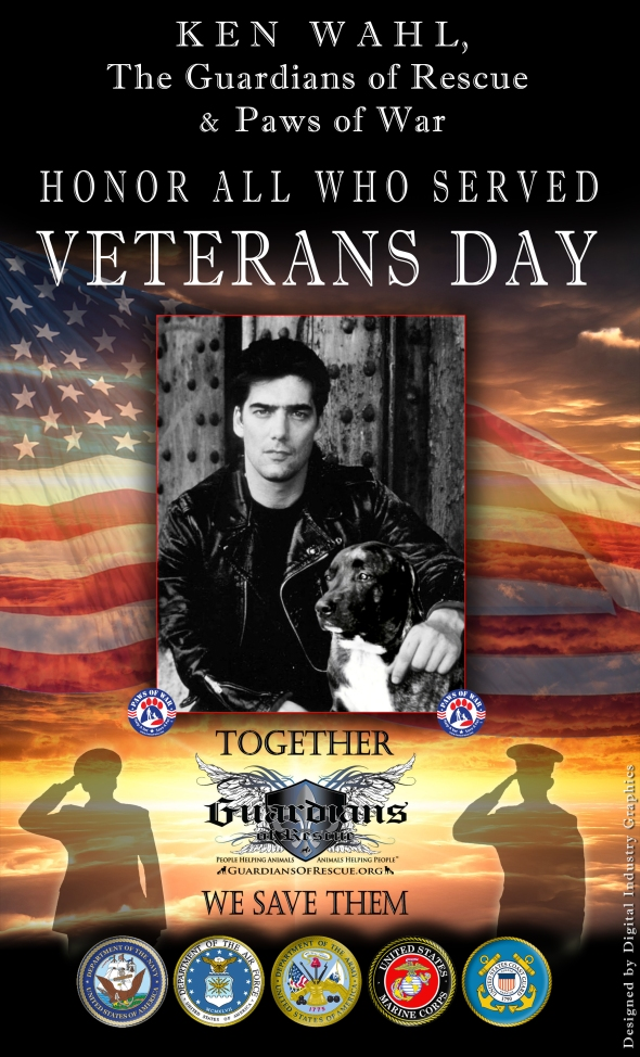 wahl-veteransday-poster